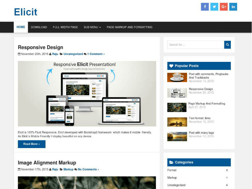 Elicit-wordpress-theme